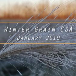 Winter Grain CSA